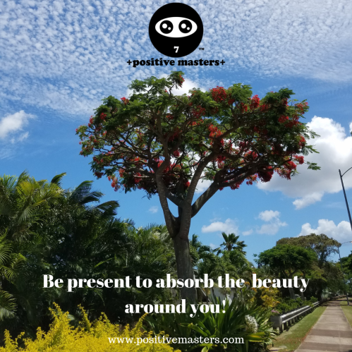 Live in the present an absorb all the beauty around you!